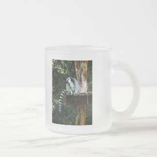 Ring-Tailed Lemur 10 Oz Frosted Glass Coffee Mug
