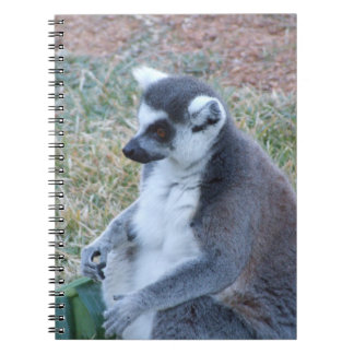 Ring Tailed Lemur Notebook