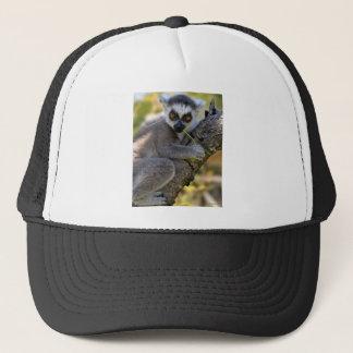 Ring Tailed Lemur Trucker Hat