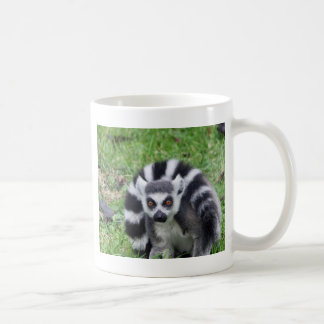 ring tailed lemur waiting for mom and lover mug