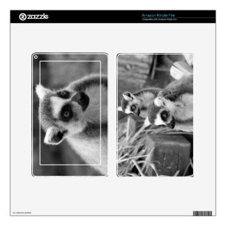 Ring-tailed lemur with baby black and white kindle fire decals