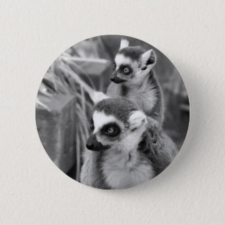 Ring-tailed lemur with baby black and white pinback button