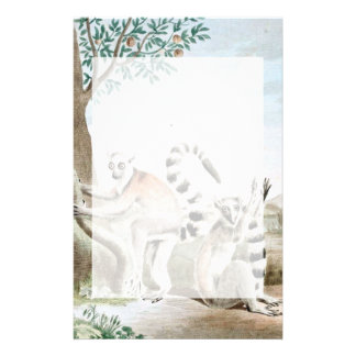 Ring-Tailed Lemurs Illustration Stationery