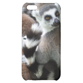 Ring Tailed Lemurs iPhone 4 Case