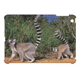 Ring-Tailed Lemurs (Lemur Catta), Berenty Cover For The iPad Mini