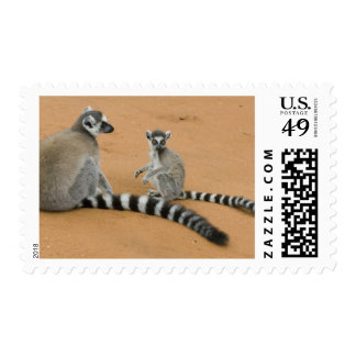 Ring-tailed Lemurs, (Lemur catta), Berenty Postage Stamp