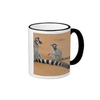 Ring-tailed Lemurs, (Lemur catta), Berenty Ringer Mug
