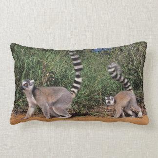 Ring-Tailed Lemurs (Lemur Catta), Berenty Throw Pillow
