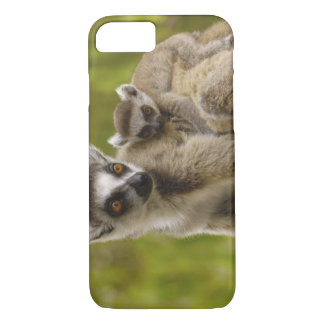 Ring-tailed lemurs (Lemur catta) Mother & baby. iPhone 7 Case