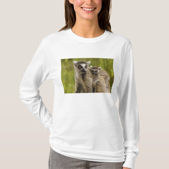Ring-tailed lemurs (Lemur catta) Mother & baby. T-Shirt