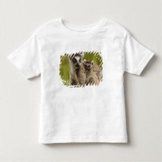 Ring-tailed lemurs (Lemur catta) Mother & baby. Toddler T-shirt