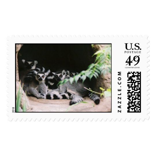 Ring Tailed Lemurs Postage