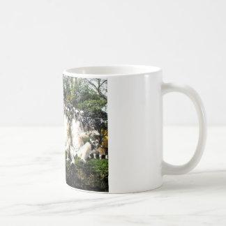 Ring tailed lemurs warming up in Spain Coffee Mug