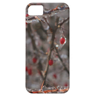 ring the holly iPhone 5 cases