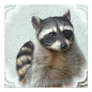 Ringed Raccoon  Invitations