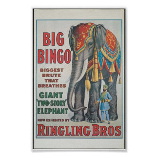Ringing Bros Big Bingo the elephant Circus Poster