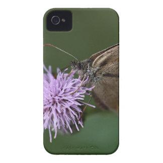 Ringlet Butterfly , Aphantopus hyperantus iPhone 4 Case