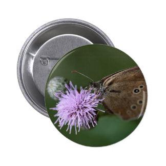 Ringlet Butterfly , Aphantopus hyperantus Pinback Button