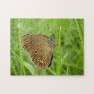 Ringlet Butterfly Photo Puzzle with Gift Box