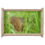 Ringlet Butterfly Serving Tray