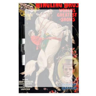 Ringling Bros. Las demostraciones más grandes del Pizarras Blancas