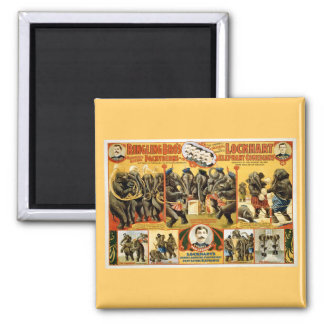 Ringling Bros Pachyderms1899 2 Inch Square Magnet
