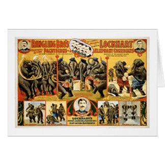 Ringling Bros Pachyderms1899 Felicitación