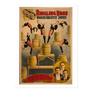 Ringling Bros. / Raschetta Bros. Postcard