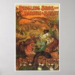 Ringling Bros y Barnum y demostraciones combinadas Impresiones