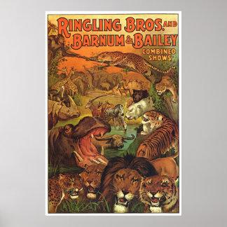 Ringling Bros y Barnum y demostraciones combinadas Póster