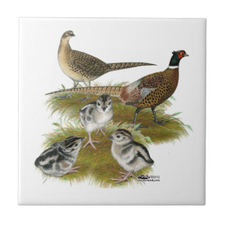 Ringneck Pheasant Family Ceramic Tile