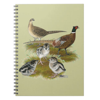 Ringneck Pheasant Family Spiral Notebook