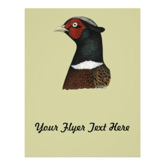 Ringneck Pheasant Head Flyer