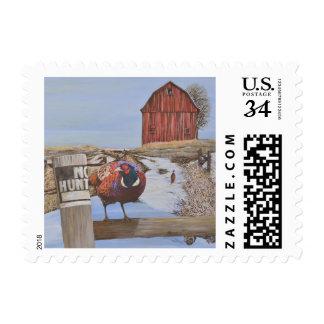 Ringneck Pheasant On Farm Original Painting Postage Stamp