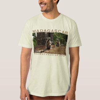 Ringtail lemurs in Madagascar Tee Shirt