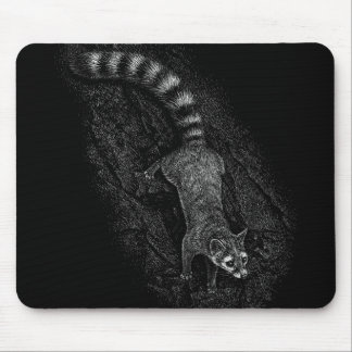 Ringtail mousepad