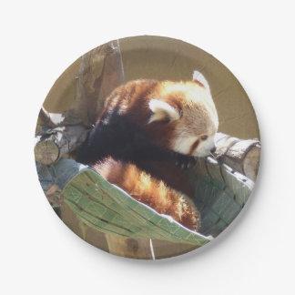 Ringtailed Panda Custom Paper Plates