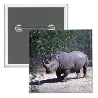 Rinoceronte blanco pin cuadrado