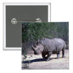 Rinoceronte blanco pins