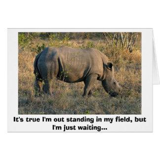 Rinoceronte blanco tarjeta de felicitación