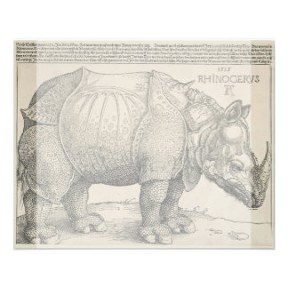 "Rinoceronte de Albrecht Durer Folleto 4.5"" X 5.6"""
