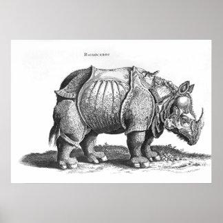 Rinoceronte de Historia Animalium Impresiones