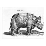 Rinoceronte, de 'Historia Animalium Tarjeta Postal