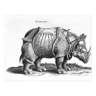 Rinoceronte de Historia Animalium Tarjeta Postal