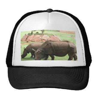 Rinoceronte Gorro