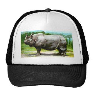 Rinoceronte indio gorras