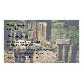 Rinoceronte indio plantillas de tarjetas de visita