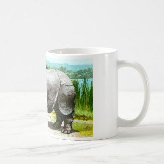 Rinoceronte indio tazas de café