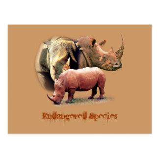 Rinoceronte las tarjetas en peligro de la especie tarjetas postales