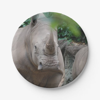 Rinoceronte lindo platos de papel